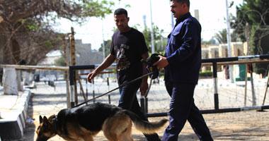الأمن يمشط محيط الاتحادية بالكلاب البوليسية قبل بدء مؤتمر دعم السيسى