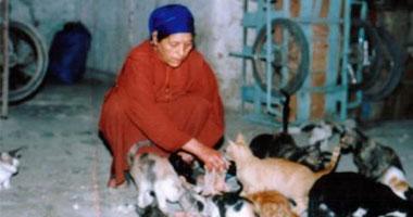 انتشار القطط والكلاب يهدد بنقل الطاعون إلى المصريين
