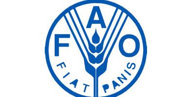 شعار منظمة الفاو - صورة أرشيفية