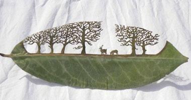 فن النقش على أوراق الشجر بأسبانيا s7201122225028.jpg