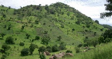 الجارديان: نوبيو السودان يشعرون
