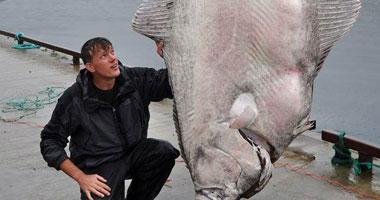 """رجل من كاليفورنيا يصطاد أكبر سمكة """"هالبوت"""" فى العالم"""