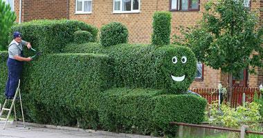 بريطانى يقلم أشجار حديقته على شكل قطار