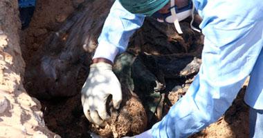 العثور مقبرة جماعية ليبيا