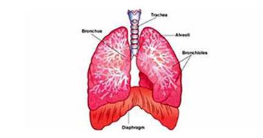 تفرق كتير.. سرطان الرئة يختلف بين المدخنين وغير المدخنين