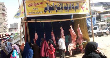 شعبة اللحوم تؤيد قرار محافظ القاهرة بإلغاء تراخيص الشوادر