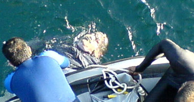 انتشال جثة عامل من مياه بحر يوسف ببنى سويف بعد انتحاره غرقا