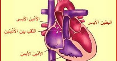 ثقب جدار القلب بين الأذينين هو أحد أمراض العيوب الخلقية البسيطة
