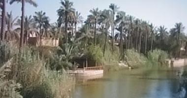 ارتفاع عدد حالات التسمم جراء تلوث المياه في البصرة إلى 60 ألف حالة
