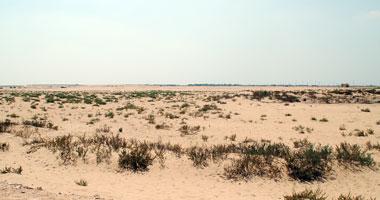 قانون حق الانتفاع يحل مشكلة الأراضى فى مصر