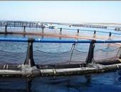 200 دولة تتعهد بوقف تلويث مياه البحار بمخلفات البلاستيك