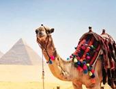 مسئول بمؤتمر السياحة العلاجية: مصر الأولى كمقصد للسياحة العلاجية
