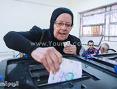 8 وقفات أمام لجان الانتخاب للمصريين بعد 2011.. سجل يا تاريخ