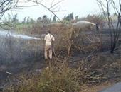 بالصور.. السيطرة على حريق نشب فى مخلفات زراعية بكفر الشيخ