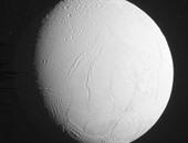 د. صبرى إسماعيل يكتب: وجه القمر