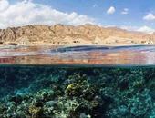 """قصة """"البلو هول"""" الحفرة البحرية التى صنعها """"مذنب"""" فى قلب البحر الأحمر.. المسبح الطبيعى يضم أجمل مكان للشعب المرجانية بالعالم.. والسائحون الأجانب والمصريون يتهاتفون على الغوص فى أعماقه"""