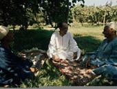 """صورة نادرة لـ""""السادات"""" يجلس على الأرض مع فلاحى قرية ميت أبو الكوم"""