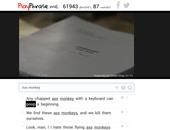 PlayPhrase.me تطبيق يعرض مقاطع صوتية تنطق بالجمل التى تكتبها