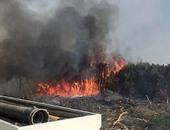 السيطرة على حريق بغابات الصرف الصحى بمركز باريس بالوادى الجديد