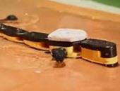 """روبوت على شكل """"السمندل"""" يساعد العلماء فى كشف أسرار الحبل الشوكى للفقاريات"""
