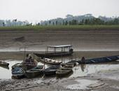 ولاية الأمازون البرازيلية تواجه موجة من الجفاف
