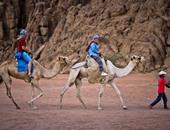 حزب المؤتمر: السياحة يجب أن تكون فى أولويات الأمن القومى المصرى