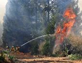 دراسة: التغير المناخى يضاعف حرائق الغابات