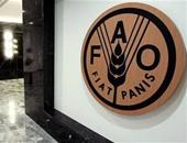 """""""الفاو"""": ارتفاع أسعار الغذاء العالمية فى شهر مارس"""