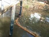 النائب خالد مشهور يطالب بتوفير مياه للزراعة: المزارعون يستخدمون مياه صرف