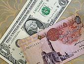 """""""شعبة الورق"""" تتوقع تجاوز سعر طن الورق المحلى 12.5 ألف جنيه"""