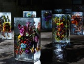 فنان يابانى يقيم معرضًا فريدًا للزهور المثلجة فى طوكيو