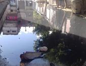 بالصور.. أرض الصناعات بالعجمى تغرق فى مياه الصرف الصحى والأهالى يستغيثون