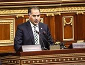 وكيل مجلس النواب: سيكون للبرلمان موقف حاسم تجاه هشام جنينة