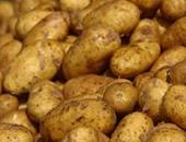 الزراعة: وصول 41 ألف طن تقاوى بطاطس بالموانئ وجارٍ فحصها