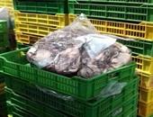 ضبط 7.3 طن سمك غير صالح للاستهلاك الآدمى بثلاجة لحفظ المواد الغذائية بقليوب