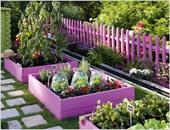 بالصور.. أفكار مبتكرة لأحواض الزهور والنباتات