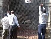 """استجابة لما نشره """"اليوم السابع"""".. إزالة القمامة من محيط مسجد السلطان قايتباى"""