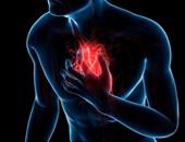 دراسة تحذر من مخاطر بلورات الكوليسترول فى زيادة خطر النوبات القلبية