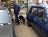 """بلاغ سلبى بالعثور على قنبلة يثير ذعر المواطنين بـ""""باكوس"""" بالإسكندرية"""