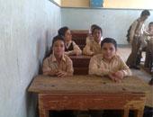 أستاذ طب نفسى: مصر رقم 17 من بين الدول عربية فى التعليم وغزة فى المقدمة