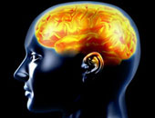 علماء: السنوات المقبلة ستشهد ربطا بين الدماغ البشرى والكمبيوتر