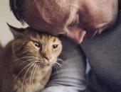 أستاذ مناعة: القطط تسبب حساسية للأطفال أكثر من الكلاب