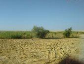 غدا.. وزير البيئة يتفقد أعمال التطوير بمنطقة الشلالات بوادى الريان