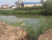 ارتفاع منسوب النيل يتسبب فى غرق أراضى بطرح النهر فى قرية دلهمو بالمنوفية