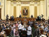 النائب شريف الوردانى: ادعاءات فرض قيود على لجنة حقوق الإنسان غير صحيحة