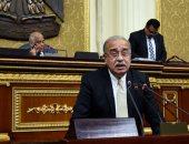 """""""الحركة الوطنية"""": الأمين العام يمثلنا فى لقاء الأحزاب مع رئيس الوزراء"""