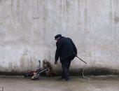 بالصور.. تعرف على معاناة حيوانات السيرك من أجل إسعاد الجماهير