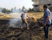 البيئة تحرر 52 محضر حرق مخلفات زراعية بمحافظة الدقهلية و63 محضرا بالغربية