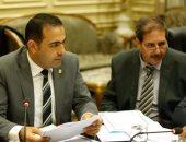 وكيل شباب النواب: استقرار مصر مهم للمنطقة وأوروبا باعتراف دولى
