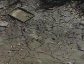 الفاو تحذر من سوء استهلاك المياه عربيا: الطلب العالمي قد يزداد 50% فى 2030